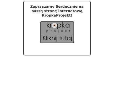 Projektowanie wnętrz wielkopolskie, projektant wielkopolskie 1523-www-thumb